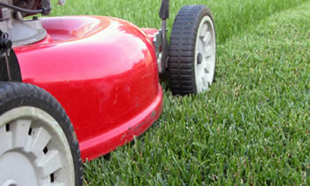Lawn Care in Indianapolis IN Lawn Care Services in Indianapolis IN Quality Lawn Care in Indianapolis IN